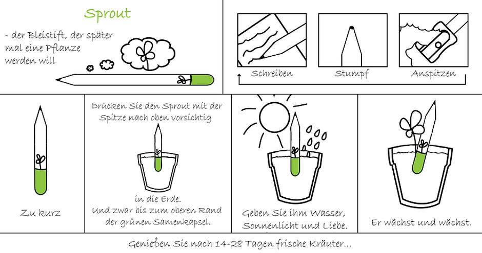 Anleitung zum Einpflanzen des Sprout-Werbebleistifts